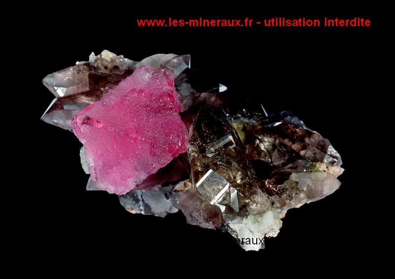 fluorine rose chamonix